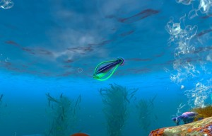 Рыба обруч Hoopfish в воде