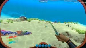 Рыба наблюдатель Papper